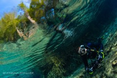 OUT OF ROOM: Photographed in Ginnie Springs, Florida