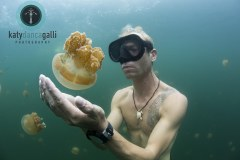 Our dive guide Chris inspects a jellyfish in jellyfish lake Palau.