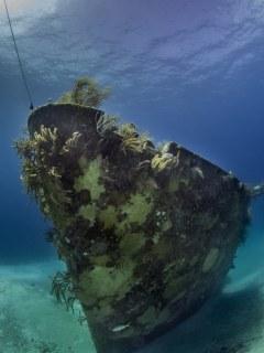 Ray of Hope wreck; Nassau, Bahamas