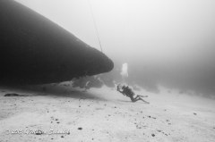 Hilma - The Hilma Hooker is an iconic wreck in Bonaire. Here the wreck is given scale by the diver taking a photo.