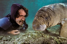Manatee and friend.