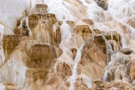 Yellowstone-052818-5559