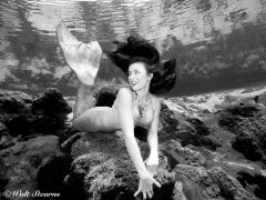 Mermaid Shannon