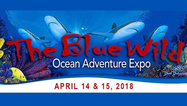 BlueWild-2018-blog